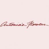 Antonia`s Flower